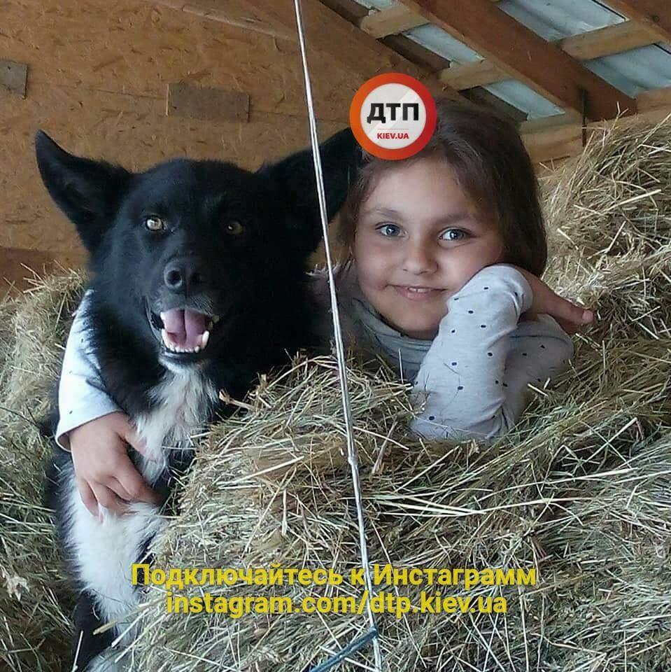 На Львовщине егерь застрелили собаку ради развлечения (Фото)