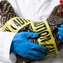 В Южной Корее зафиксировано серьезное заболевание домашних птиц