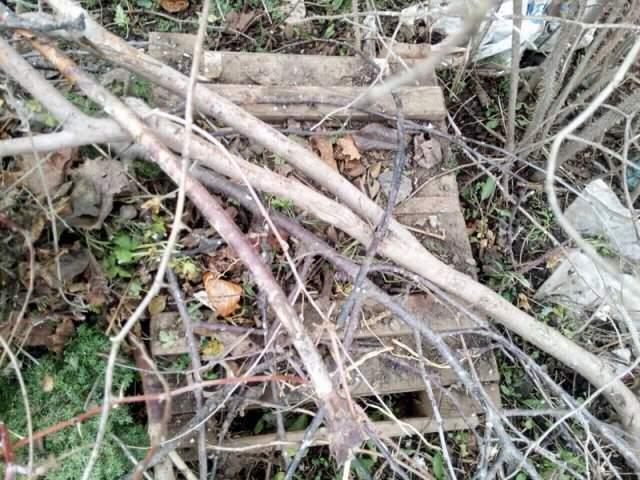 На Херсонщине под грудами мусора лежал тайник с боеприпасами (Фото)