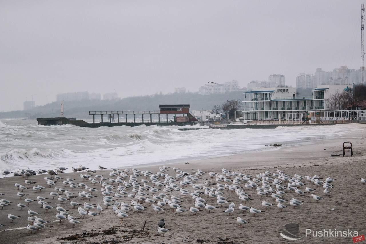 Набережную в Одессе накрыло мощными волнами (Видео)