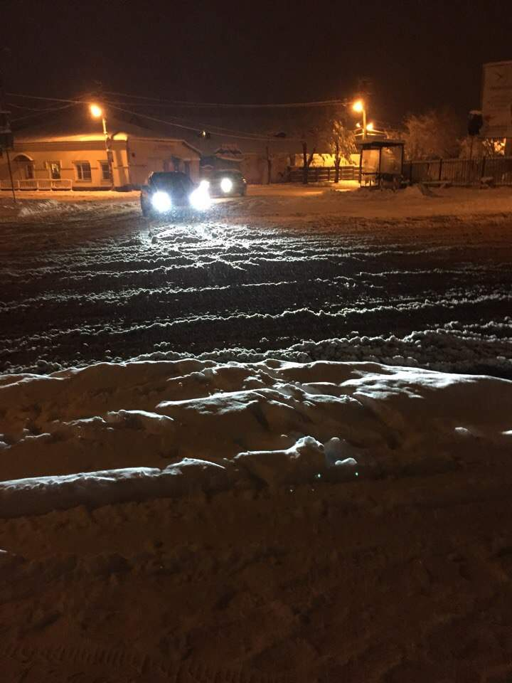 Львовскую область засыпало снегом: из-за непогоды ограничили движение транспорта (фото)