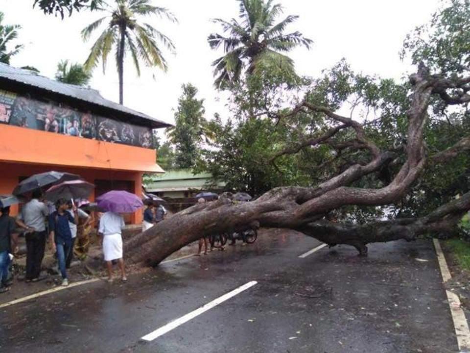 Тропический циклон в Индии: 20 человек погибли (видео)