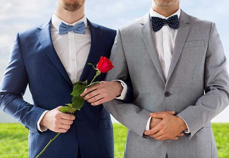 Австрия легализовала однополые брачные союзы