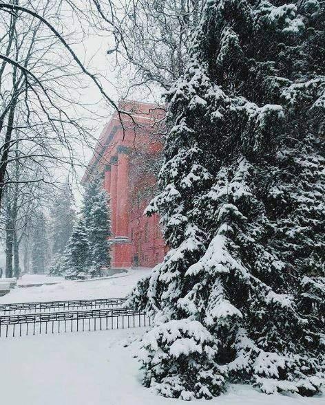 Красота зимнего Киева очаровывает всех (Фото)