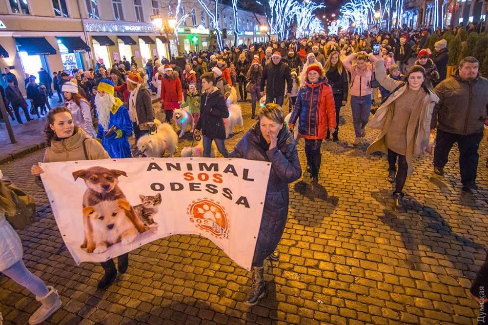 В Одессе состоялся милейший парад (Фото)