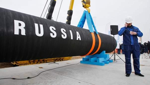 Природоохранные организации просят Германию остановить строительство газопровода