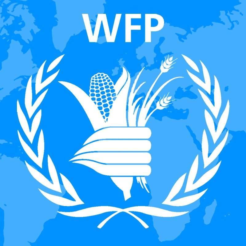 Мировая программа продовольствия прекращает работу на Востоке Украины
