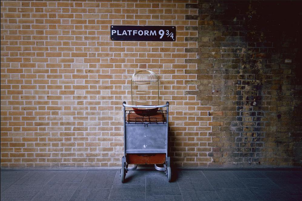 В Лондоне парень решил пройти сквозь стену на платформу 9¾ (Видео)