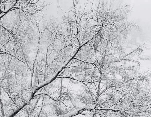 Российская столица век не видела такого сильного снегопада