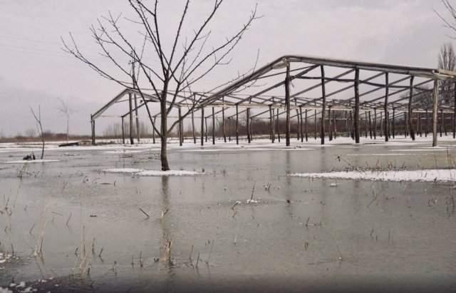 В Закарпатье из-за прорыва дамбы было подтоплено до 150 га сельхозугодий