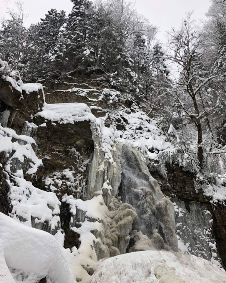 На западе Украины замерзли водопады (Фото)