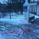 В Харькове на снегу разбросали яд для отравления собак (фото)