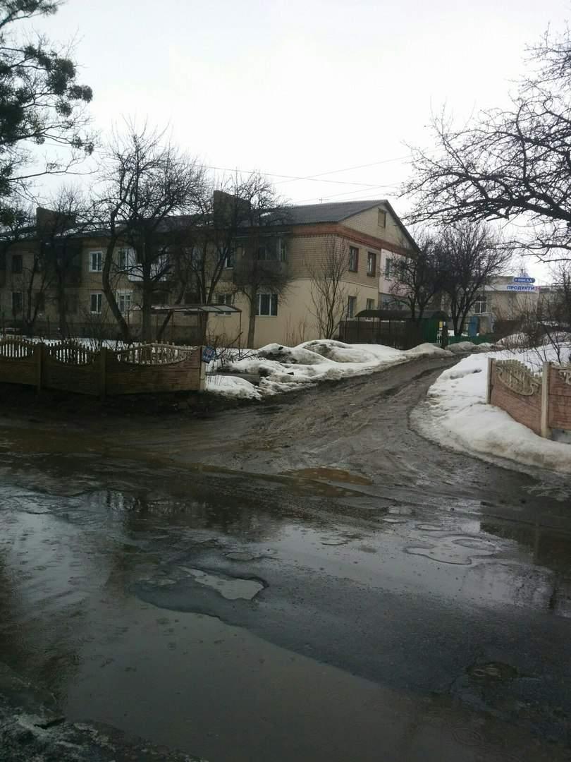 В Харьковской области дороги превратились в реки (фото)