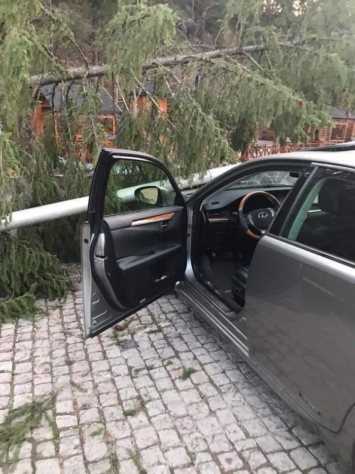 Ивано-Франковской области на горнолыжном курорте  столб   упал на автомобиль