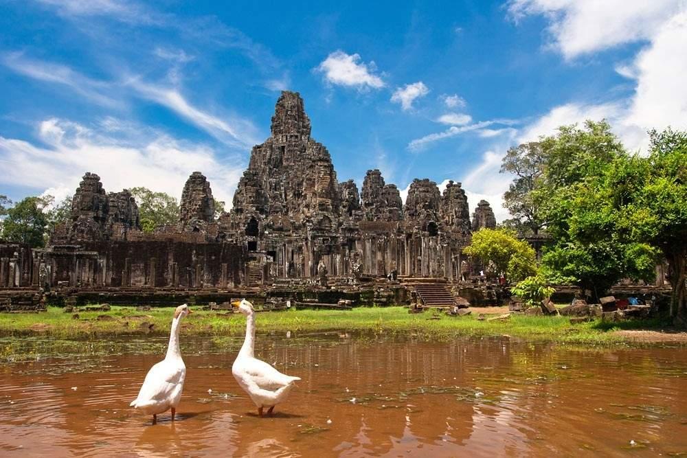 В Камбодже из-за загрязненной воды погибли 8 человек