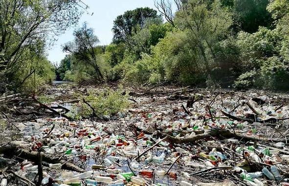 К берегам Словакии приплыл мусор из Украины (видео)