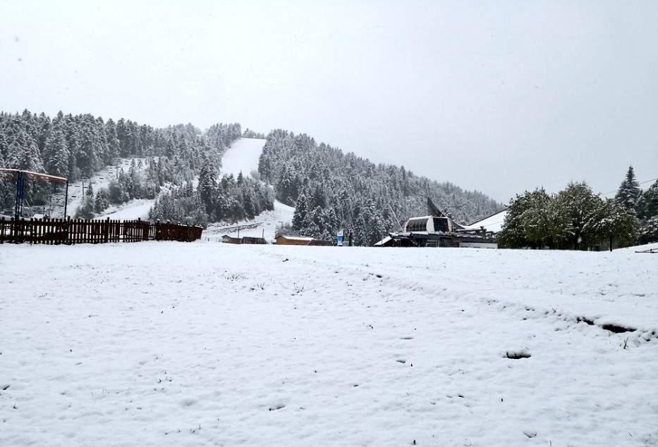 На южные регионы Франции обрушились сильные снегопады (фото)