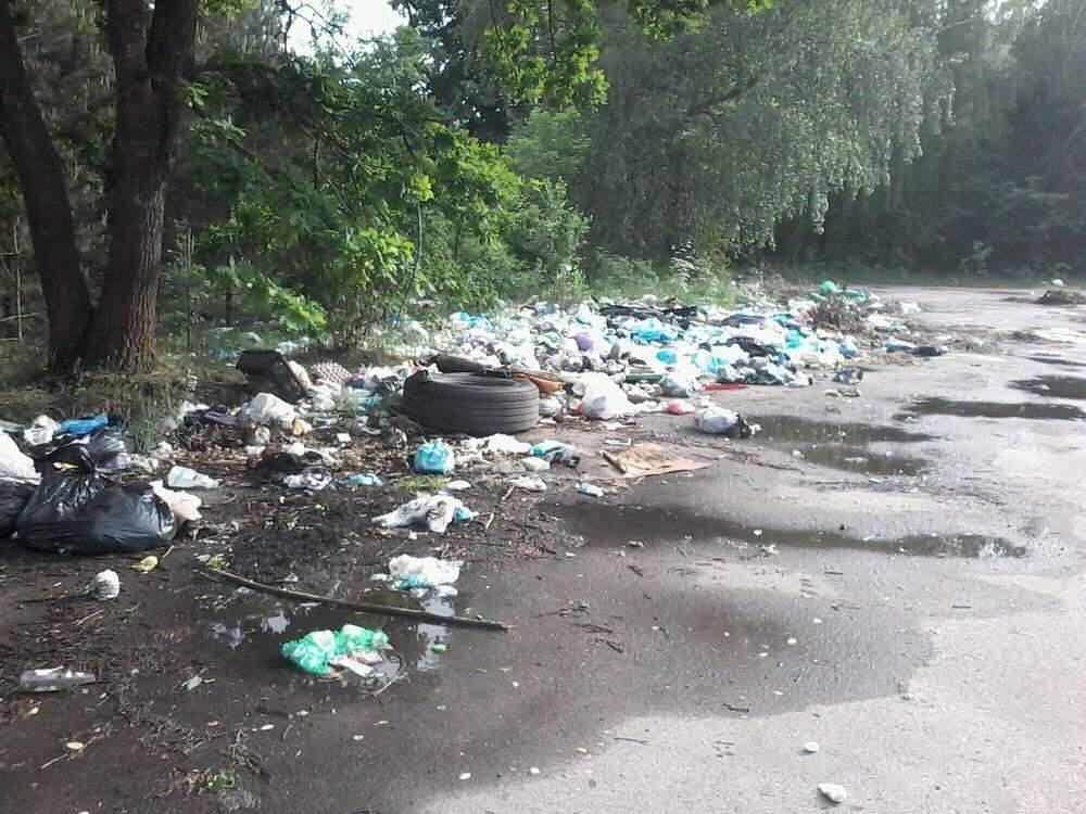 На Волыне один из городов усыпан мусором (фото)