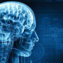 Компания Google разработала проект, который способен предсказать дату смерти пациента