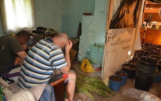 В Ивано-Франковской области сотрудники СБУ задержали наркоторговцев