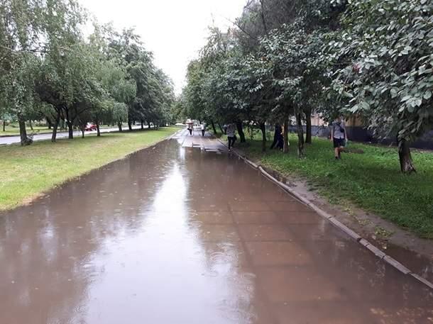 Во Львове пронесся ураган, который повалил деревья и туалеты, а также поджег столбы