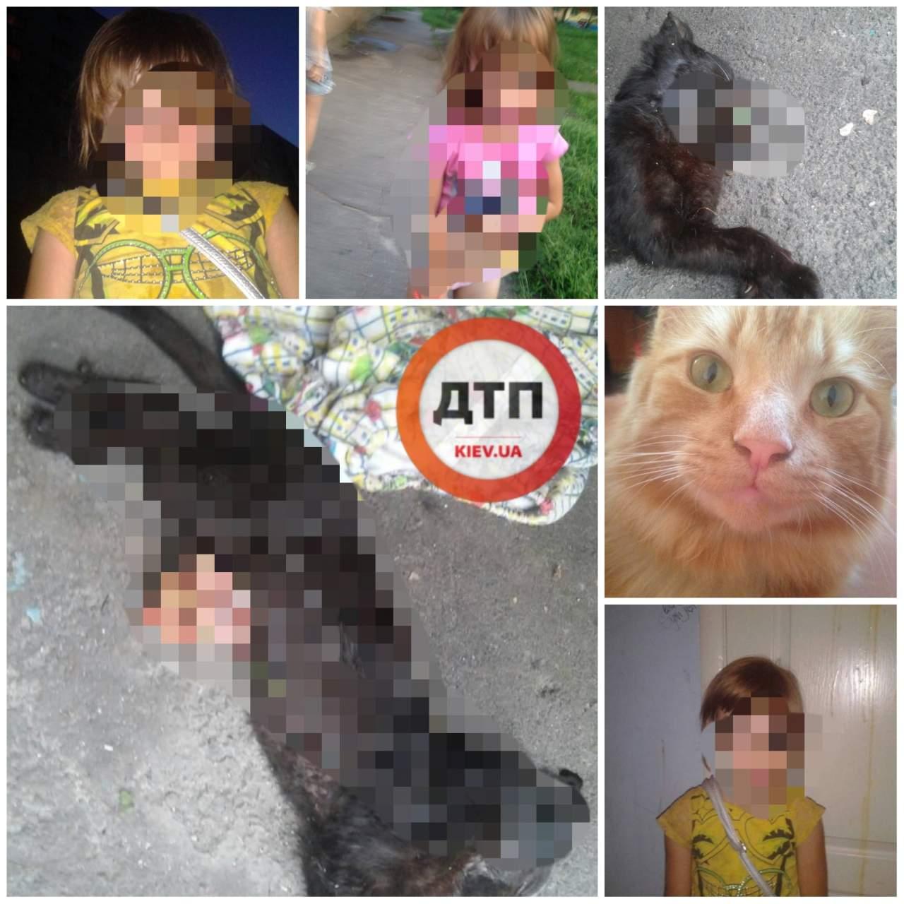 В Киеве 6-летняя девочка убивает животных и вынимает из них кишки (фото 18+)