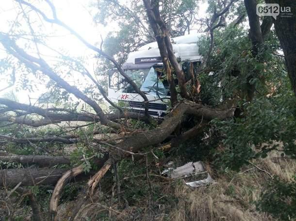 На трассе Николаев-Одесса пьяный таксист влетел в грузовик, погиб один человек (фото)