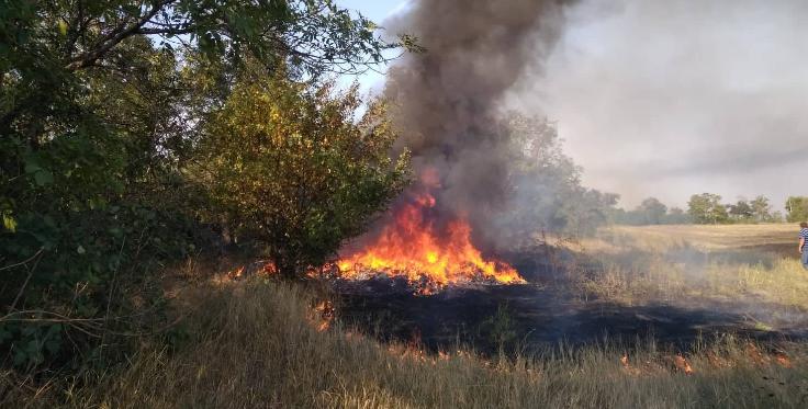 На въезде в Кривой Рог произошел масштабный пожар