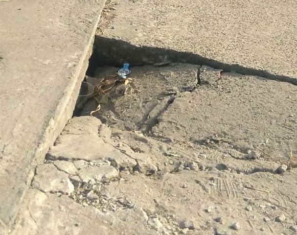 В Запорожской области травмировался мальчик, провалившись в яму