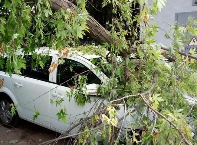 В Одессе в результате серьёзного шторма пострадали припаркованные автомобили