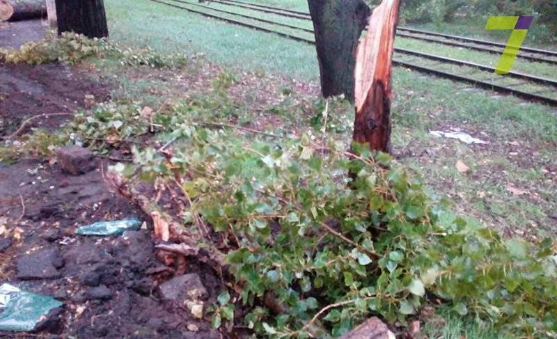 В Одессе на автомобиль с людьми рухнуло дерево. Есть пострадавшие