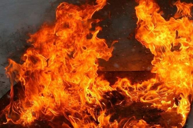 В Житомирской области в результате пожара погибли несколько человек