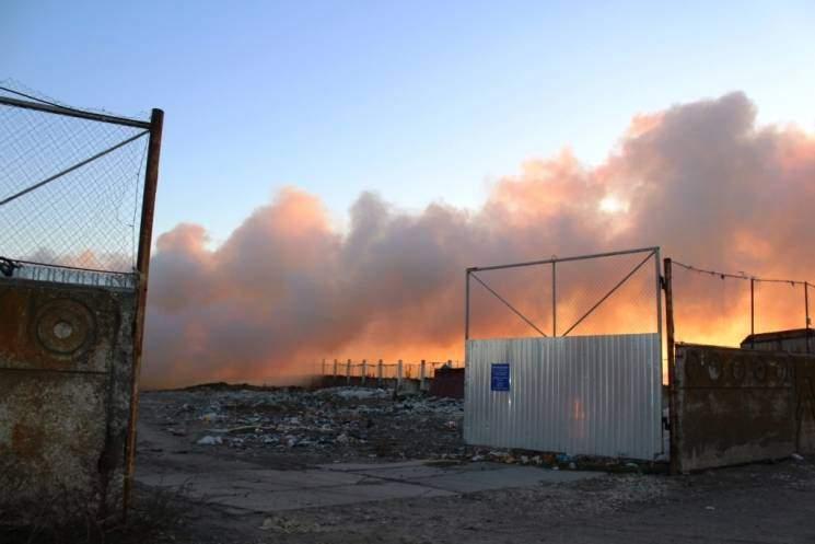 В Запорожской области разгорелся масштабный пожар