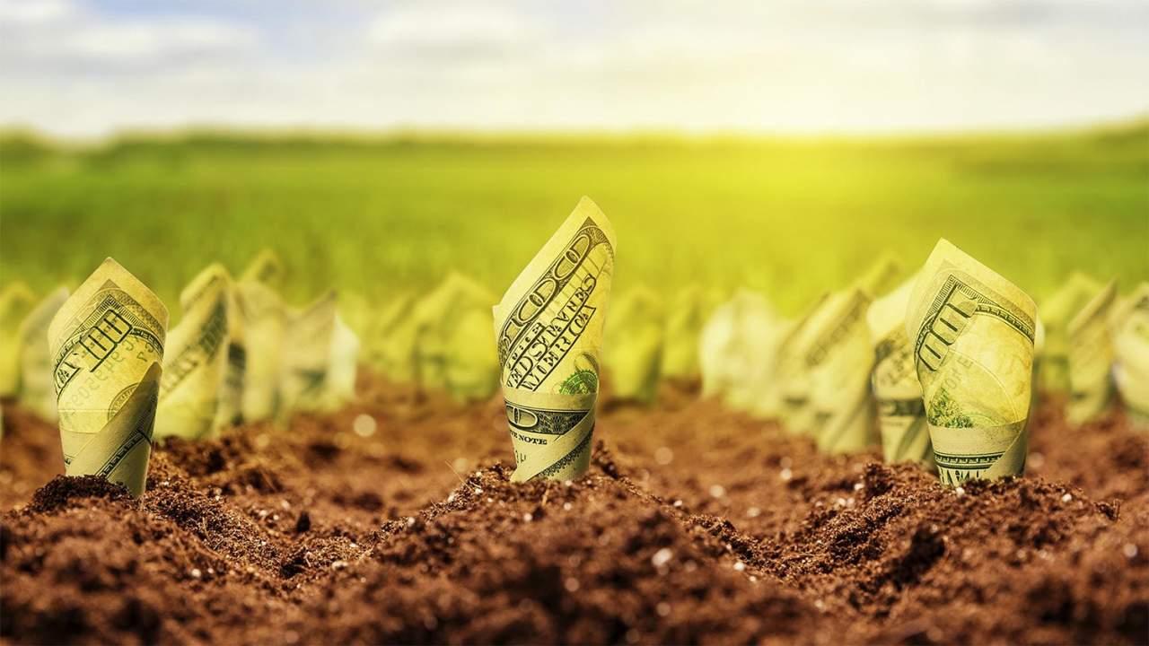 В Украине вводится свободный рынок на земли