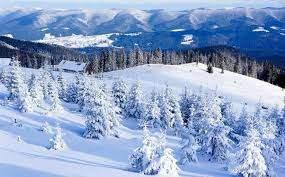 Карпаты продолжает засыпать мелкий снег