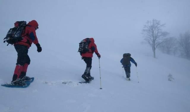 В Карпатах уже третьи сутки продолжаются поиски пропавшего лыжника