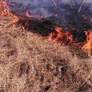 На Киевщине сжигая сухую траву едва не погибла женщина