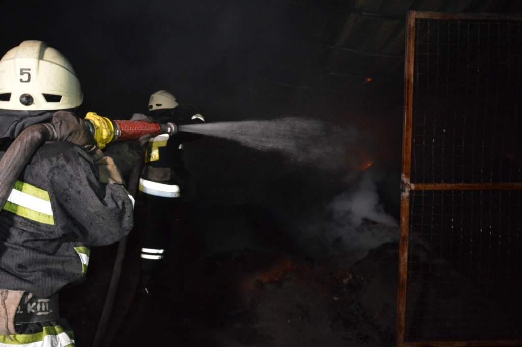 В Кривом Роге произошел серьёзный пожар: Пылал дом