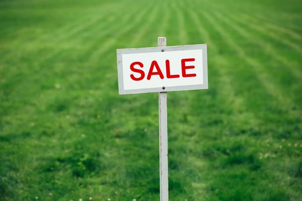 Больше половины украинцев не поддерживают отмену моратория на продажу земли