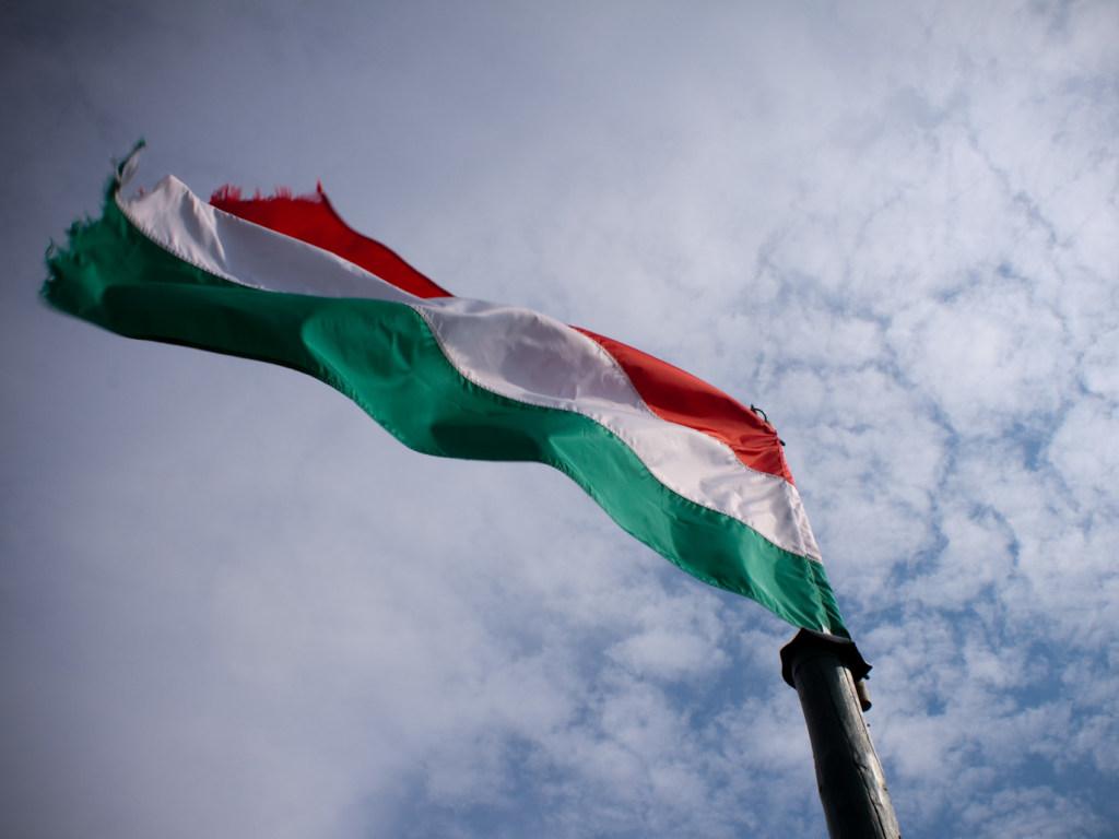 Заместитель главы областного совета считает необходимым создать в Закарпатье Венгерский район