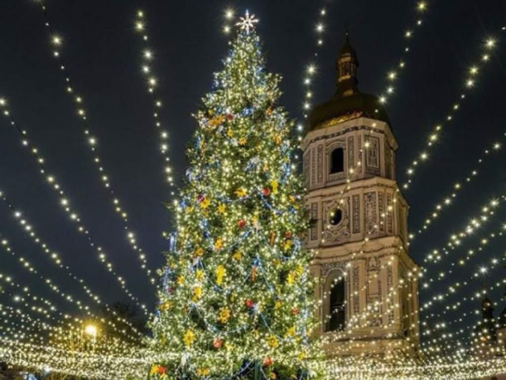 В центре Киева начали устанавливать главную елку Украины (ФОТО)