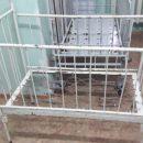 Детскую больницу в Николаеве атаковали полчища тараканов (ВИДЕО)