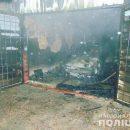 В Киеве ревнивый мужчина сжег машину бывшей возлюбленной (ФОТО)