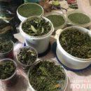 У жителя Мелитополя изъяли 2 килограмма марихуаны (ФОТО)