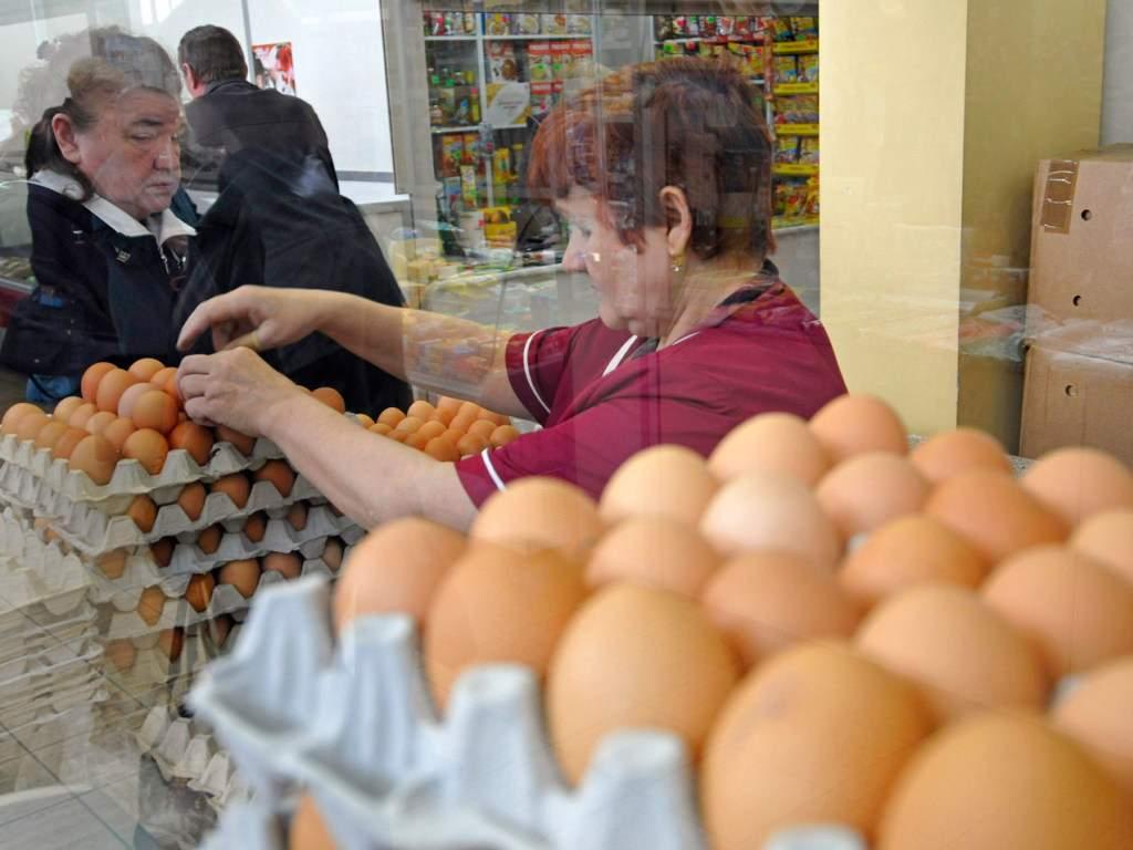 Эксперты выяснили, что нельзя мыть яйца сразу после покупки в магазине