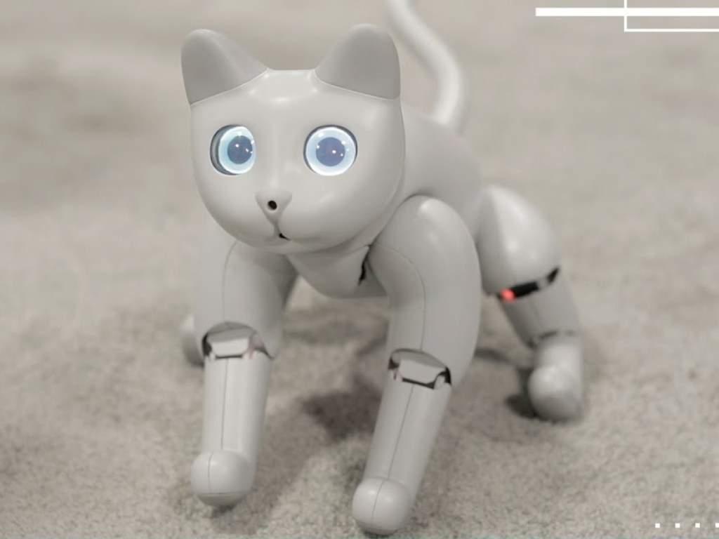 В Китае изобрели модель домашнего питомца-робота стоимостью 700 долларов (ВИДЕО)