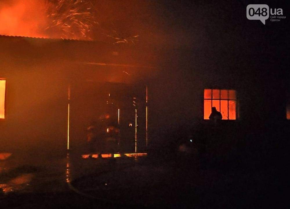 В Одесской области горел склад с зерном площадь 400 квадратных метров (ФОТО)