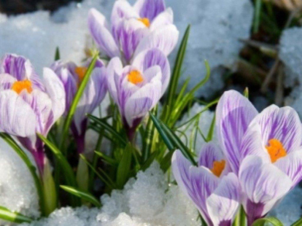 Известно, сколько выходных у украинцев в марте