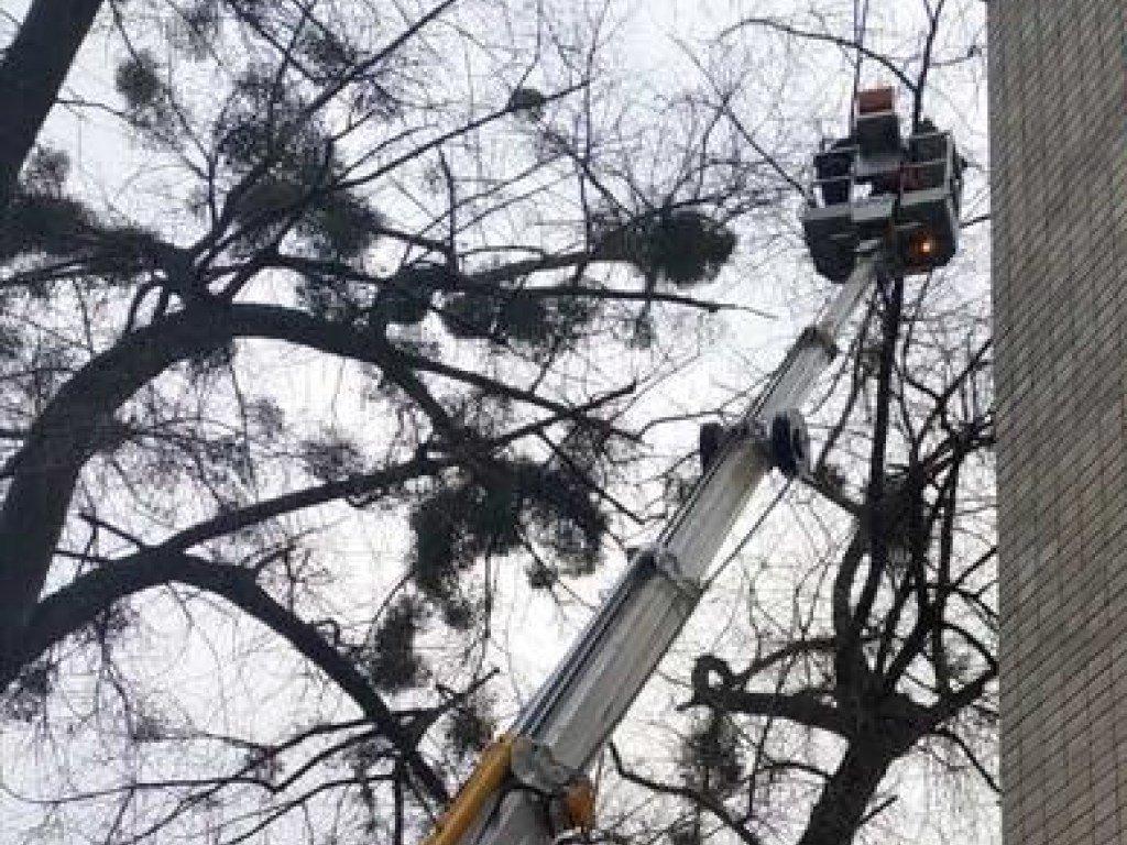 На Печерске в столице сильный ветер сорвал крышу дома (ФОТО)