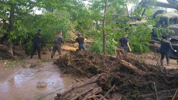 На Западной Украине обесточено семь населенных пунктов и затоплено 8 000 домов